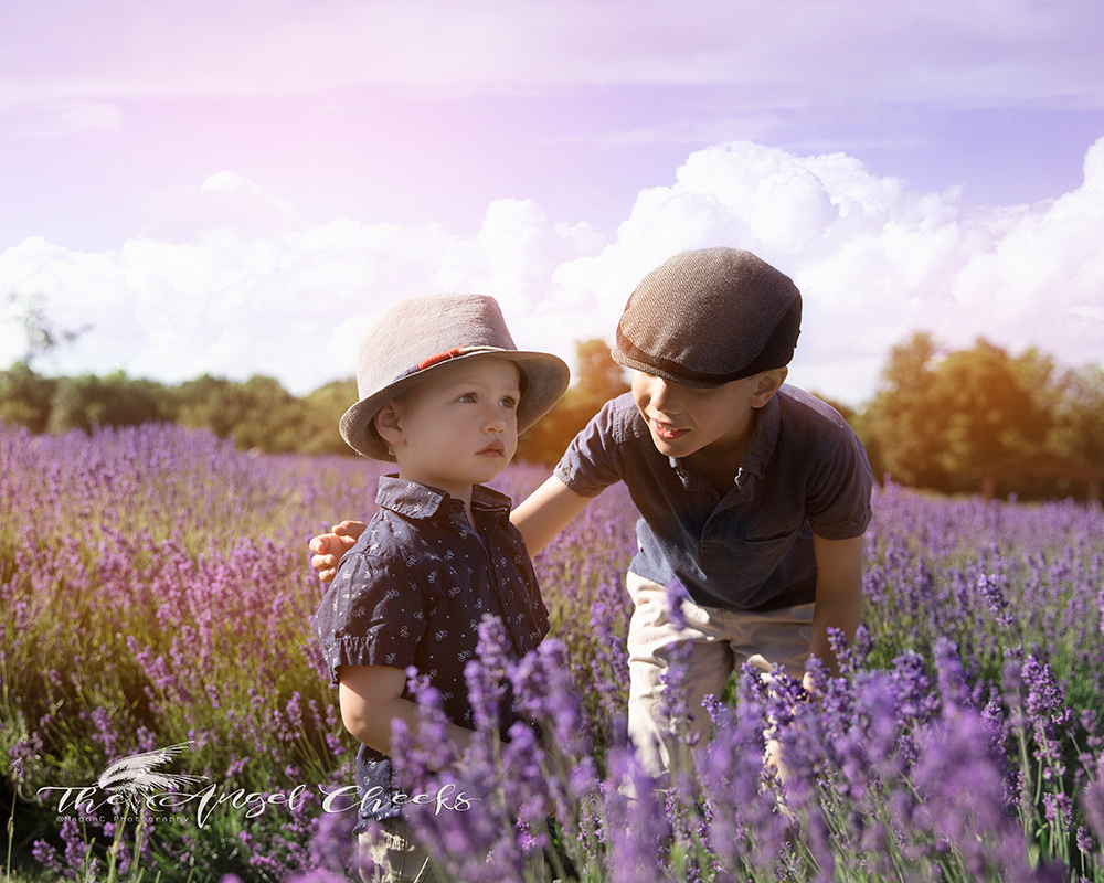 fine art child photographer High Wycombe portraits boys brothers in lavender fields